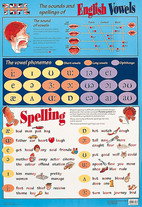 POSTER - ENGLISH VOWELS