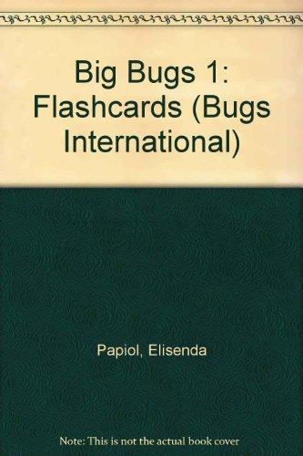 BIG BUGS 1 FLASHCARDS