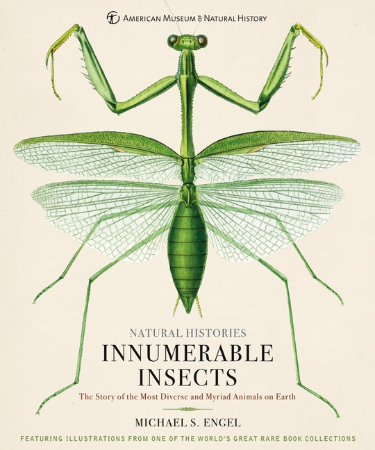 INNUMERABLE INSECTS : THE STORY OF THE MOST DIVERSE AND MYRIAD ANIMALS ON EARTH
