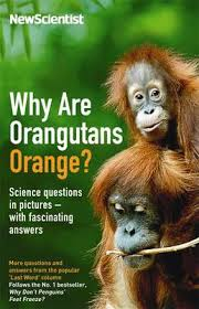 WHY ARE ORANGUTANS ORANGE ?